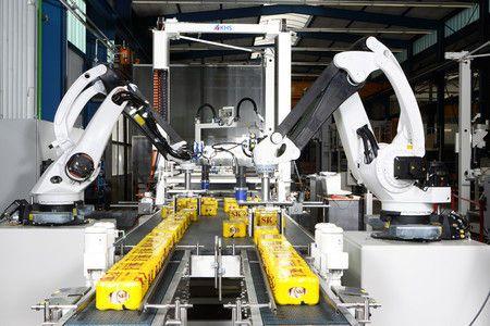 Robot envasador